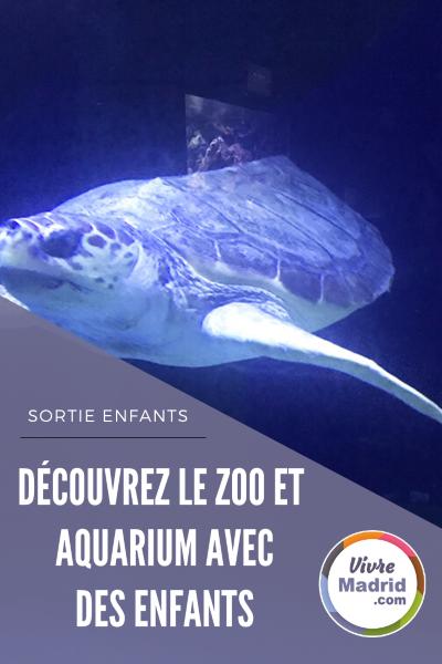 visiter le zoo aquarium de madrid avec des enfants