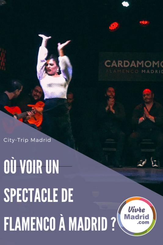 ou voir un spectacle de flamenco à Madrid