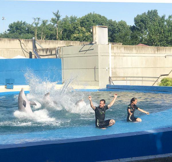visiter le zoo et aquarium de Madrid