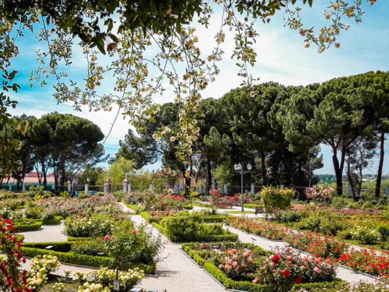 Visiter Madrid au printemps ou en été