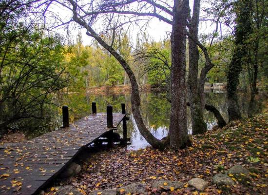 automne autour Madrid