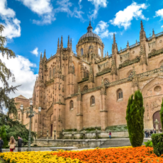 visiter salamanque cathédrale