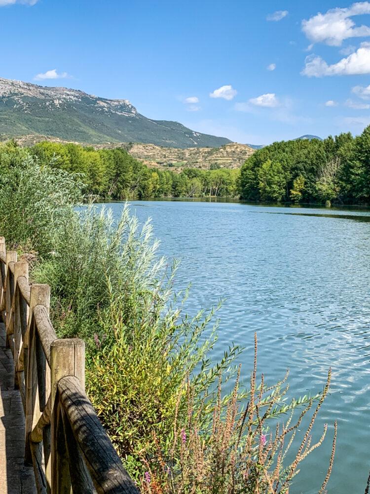 la route des vins de la Rioja