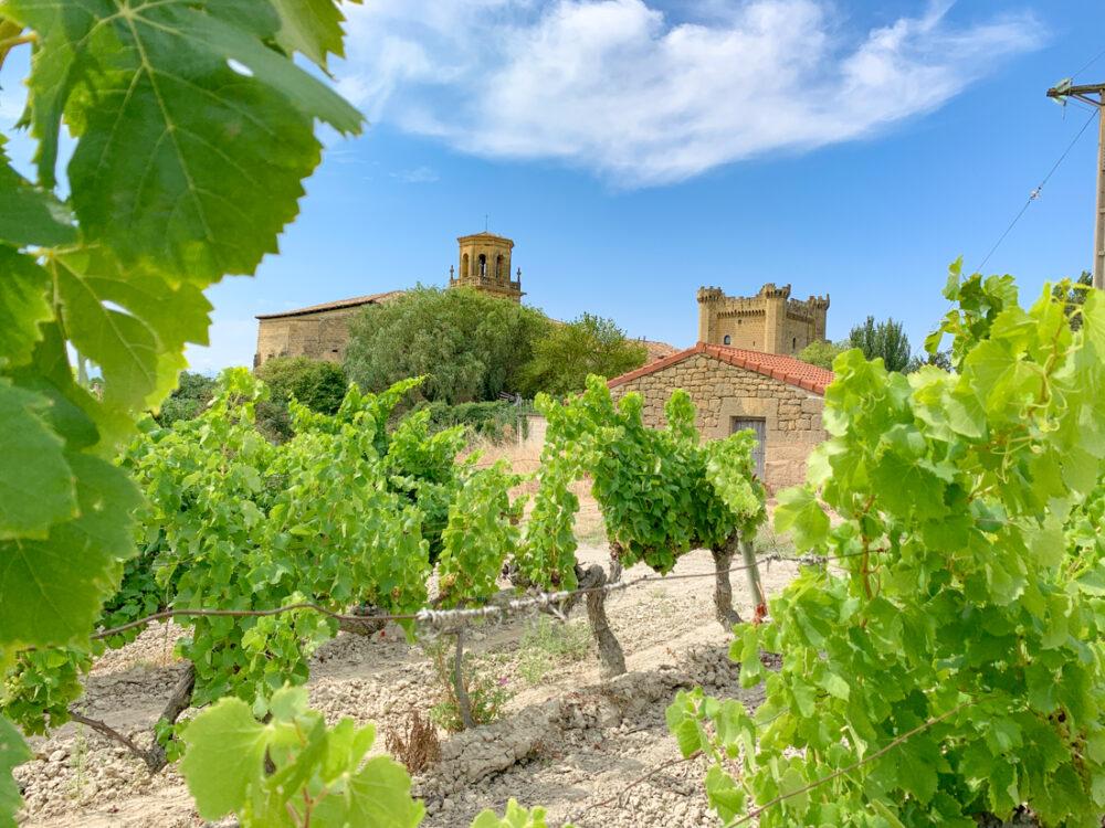 Sajarraza La Rioja